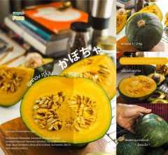 ฟักทองญี่ปุ่น Japanese Pumpkin 5 กิโลกรัม