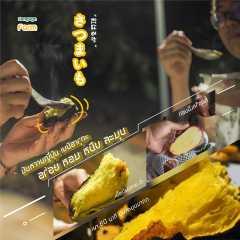 มันหวานญี่ปุ่นเนื้อสีเหลือง เบนิฮารุกะ