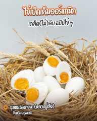 ไข่เป็ดเค็มออร์แกนิกชุมชนวัดบางนา