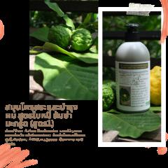 Kaffir Lime Herbal Hair Cleanser & Treatment สมุนไพรสระผม แชมพูสมุนไพรสดจากธรรมชาติ สูตร 1