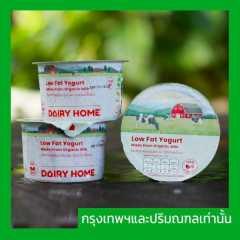 (12x120g)Low Fat Organic Set Yogurt
