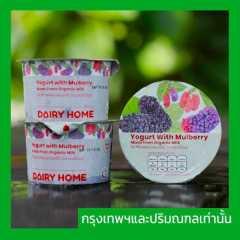 (12x120g)rganic Set Yogurt With Mulberry ‼️กรุงเทพฯและปริมณฑลเท่านั้น‼️