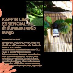 Kaffir lime Essencial Oil น้ำมันหอมระเหยผิวมะกรูด