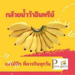 กล้วยน้ำว้าอินทรีย์