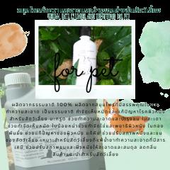 แชมพูสมุนไพรทำความสะอาดและบำรุงขนสำหรับสัตว์เลี้ยง Herbal hair cleaner and treatment for pet